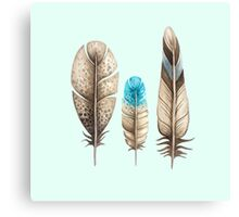 Watercolor Feathers mint green dos Canvas Print
