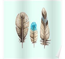 Watercolor Feathers mint green dos Poster