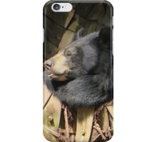 Sleeping bear iPhone Case/Skin