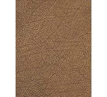 LEATHER LOOK, Leather, Antelope, Skin, Texture, Pattern Photographic Print