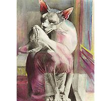 Naked Affection  Photographic Print