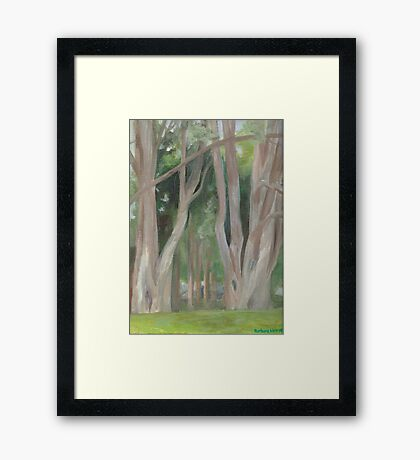 Vermont, shady trees Framed Print