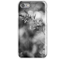 DSC_3737 iPhone Case/Skin