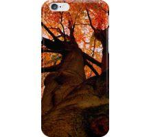 Daunting Autumn iPhone Case/Skin