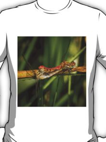 Dragonflies Mating T-Shirt