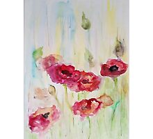 Poppies are my love Photographic Print