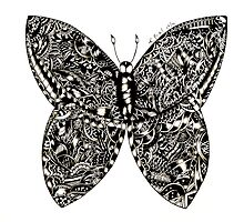Butterfly by kaumalbaigart