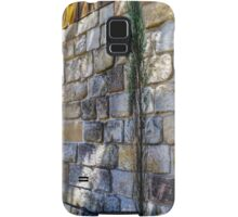 Old Stone Building Samsung Galaxy Case/Skin