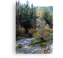 Flowing through Spearfish Canyon Canvas Print