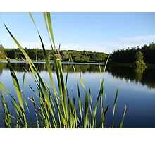 Home By the Pond Photographic Print