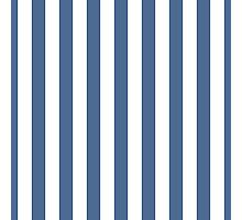 Riverside Blue and White Large Vertical Cabana Tent Stripe Photographic Print
