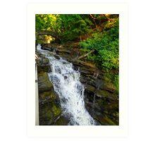 Cascadilla Gorge Waterfall Art Print