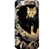 Mystery Cat iPhone Case/Skin