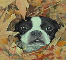Boston in the Leaves by Pam Humbargar