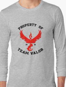 Property of Team Valor Long Sleeve T-Shirt