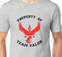 Property of Team Valor Unisex T-Shirt