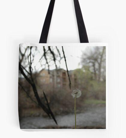 Wishing Tote Bag