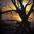 menindee sunset by Bruce  Dickson