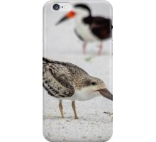 Getting Ready to Fly the Coop iPhone Case/Skin