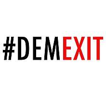 demexit5 Photographic Print