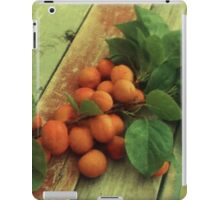 Armenian Plums at Home iPad Case/Skin