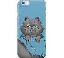 Grey persian kitty  iPhone Case/Skin
