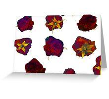 Pressed Roses Greeting Card