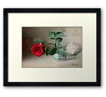 A Rose ~ In the Light of Early Morn Framed Print