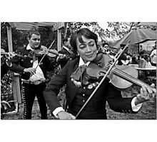 String Section Photographic Print