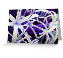 Lillies in Purple Greeting Card