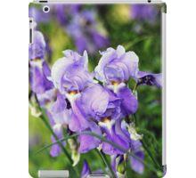 Garden Scene-900756 iPad Case/Skin