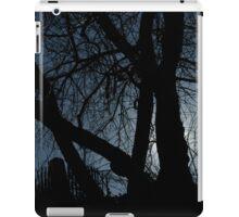 Cemetery Entrance iPad Case/Skin