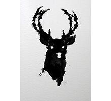 The Buck Photographic Print