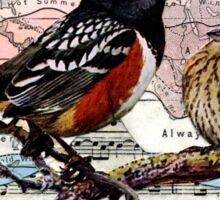 Solfeggios: Birds and Music Collage Sticker