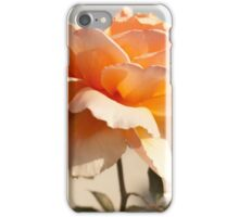 Tahitian Sunset roses, Flower photography iPhone Case/Skin