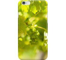 Grapevine iPhone Case/Skin