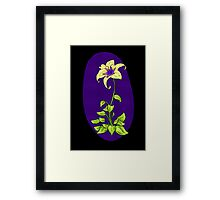 Flower Gleam and Glow. Framed Print