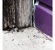 { Corners: where the walls meet #14 } Photographic Print