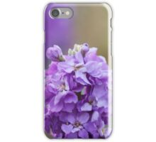 Purple flower in bloom, Floral photography, Nature, Purple iPhone Case/Skin