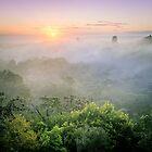 Sunrise in Tikal by Jola Martysz