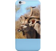 Kudu Bull - African Wildlife Background - Spiral Pride iPhone Case/Skin