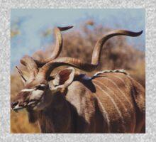 Kudu Bull - African Wildlife Background - Spiral Pride Kids Tee