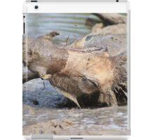 Warthog - African Wildlife Background - Healing Mud Bath iPad Case/Skin