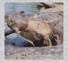 Warthog - African Wildlife Background - Healing Mud Bath One Piece - Short Sleeve
