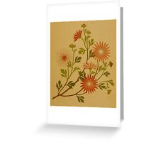 Vintage Pink and Red Wildflower Design Greeting Card