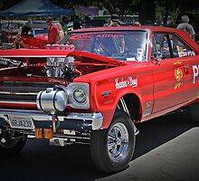 Gasser by Tracy LeMaster