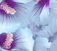 Poppy Flowers Pattern Sticker