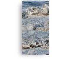 Splishy Splash of a foamy Momenary Water Sculpture Canvas Print