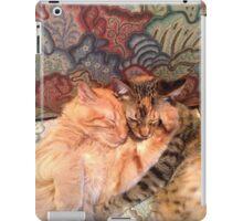 Cat Hugs iPad Case/Skin