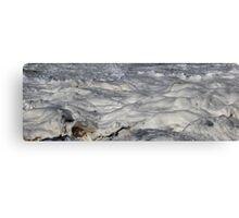 Turbulent Splash of a Momenary Water Sculpture Canvas Print